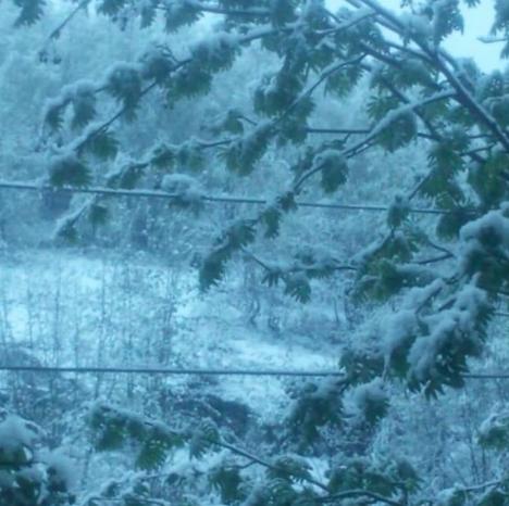Снежное лето: в Мурманске снова идет снег