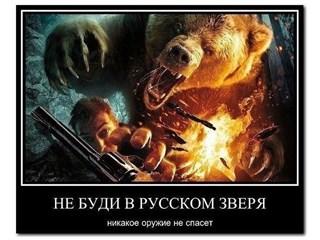 Не тыкай в медведя палкой