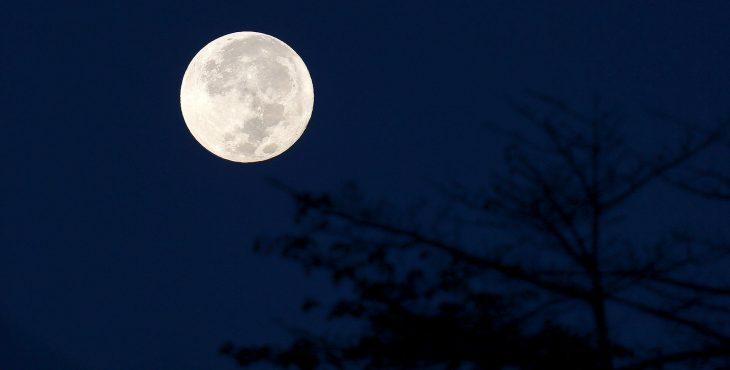 Новогодний подарок из космоса: в ночь с 1 на 2 января жители Земли смогут увидеть суперлуние