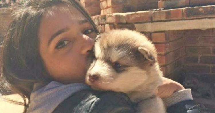 Девушка очень хотела пушистого щеночка и получила его. А потом выросло сюрпризище!