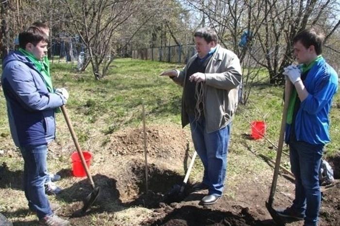 Первый промышленный плодовый сад заложен на Урале