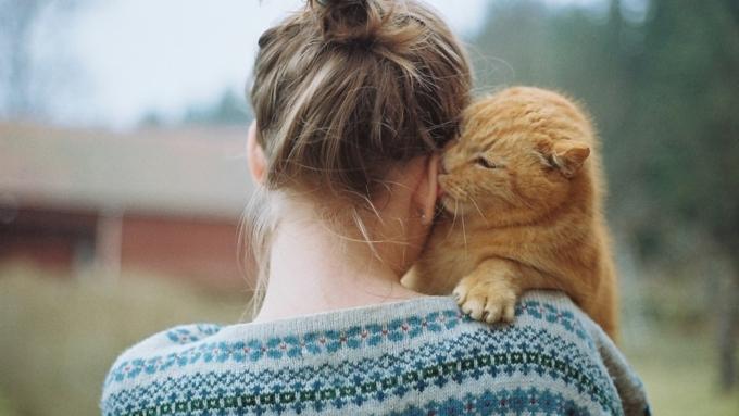 Казалось бы, работа мечты... Но необходимо ветеринарное образование.