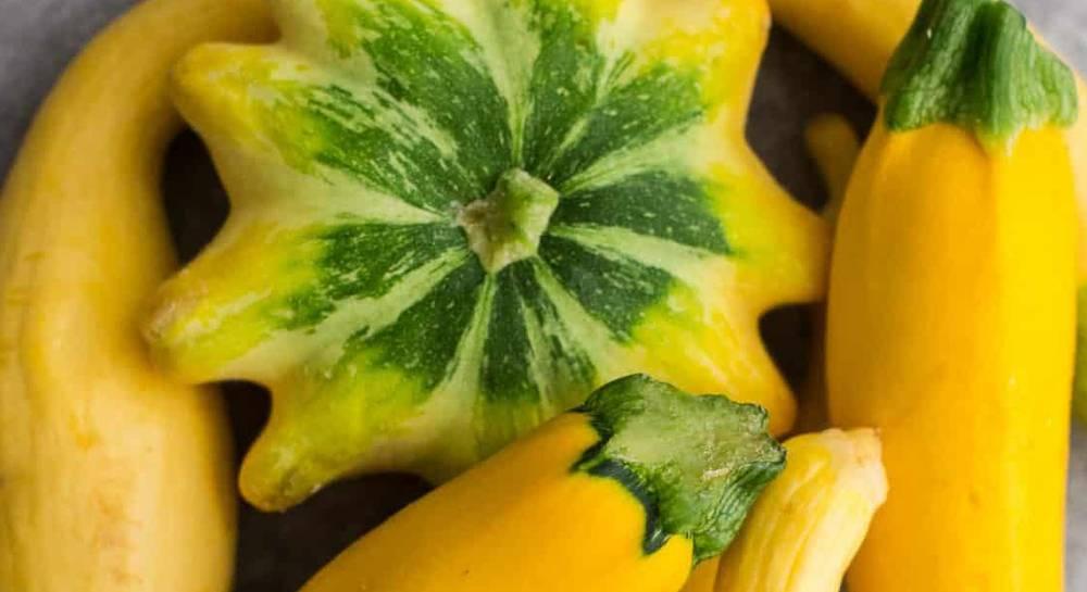 Правильное хранение плодов кабачка и патиссона