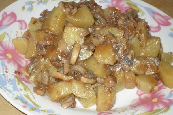 Готовим сытный ужин в мультиварке — жаркое с мясом и грибами