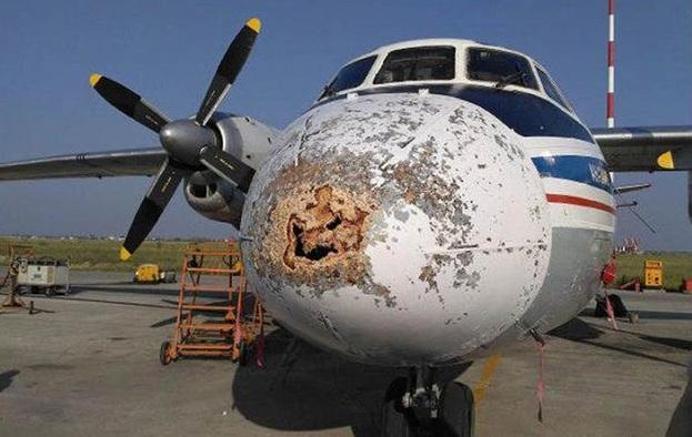 """Что привело к повреждению носовой части АН-2 """"Полярных авиалиний""""?"""