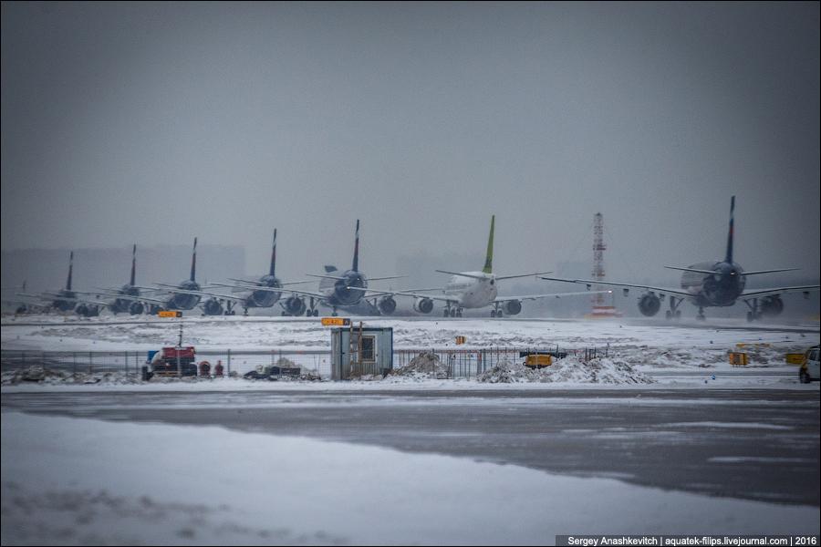Небывалое! Аэрофлот выплачивает денежную компенсацию за задержанные рейсы