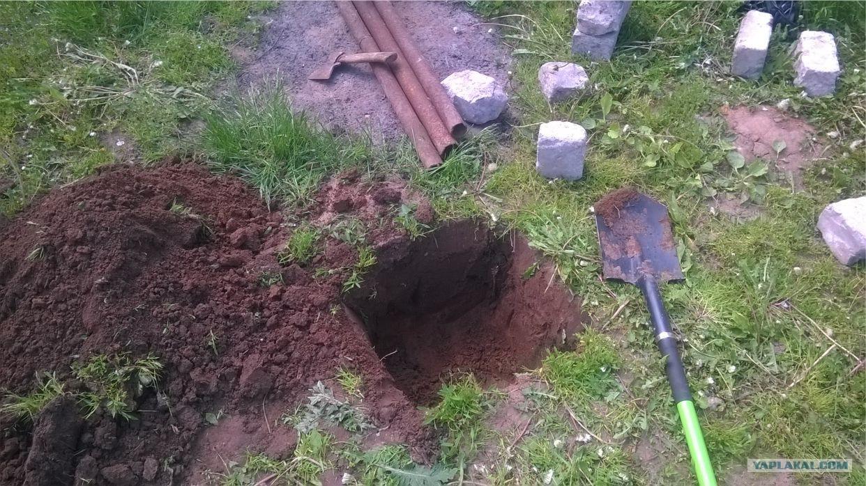 Как закоптить карася на даче