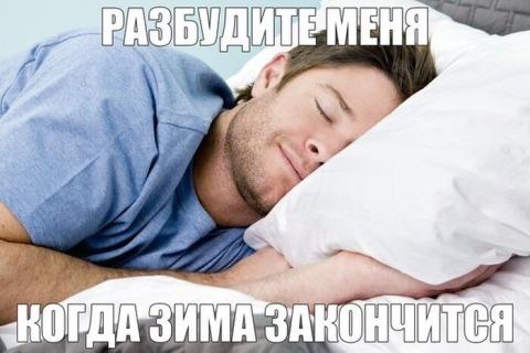 """Режим экономии: Российские ученые разрабатывают метод погружения человека в """"зимнюю спячку"""""""