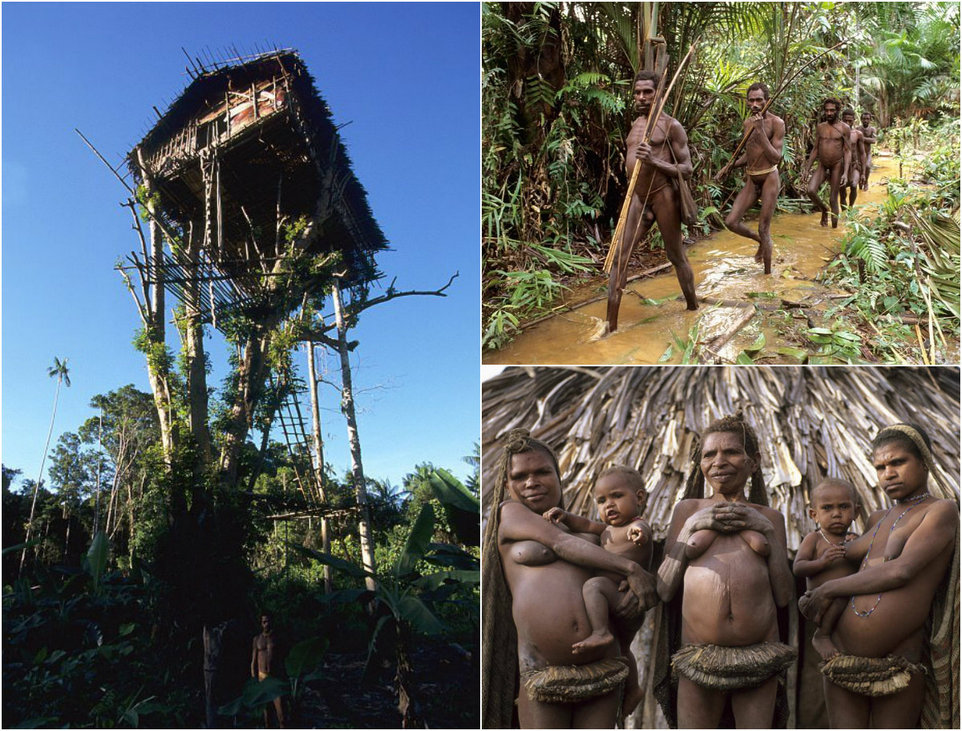 Племя Короваи - дикари, живущие над землей