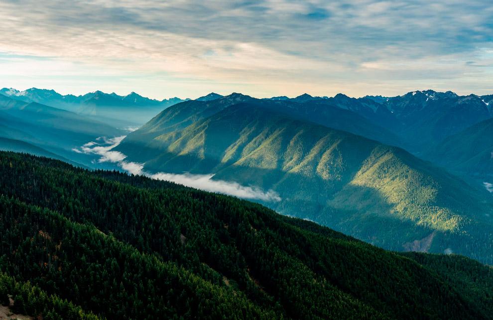 Тропический лес Хох