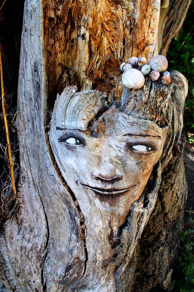 Забавные лица в лесу.