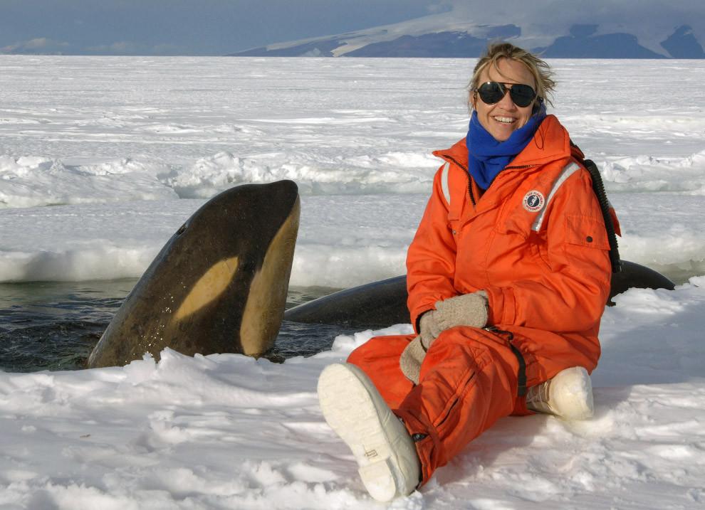 Антарктический туризм: ответы на интересующие многих вопросы об Антарктиде