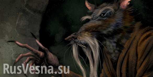 На островах Тихого океана нашли мифическую гигантскую крысу