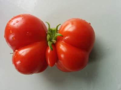 Невероятно смешные формы овощей и фруктов