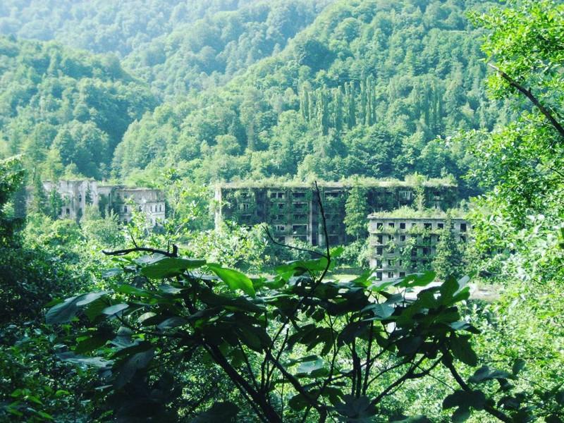 Город-лес, Абхазия заброшенное, красиво, мир без людей, природа берет свое, фото, цивилизация