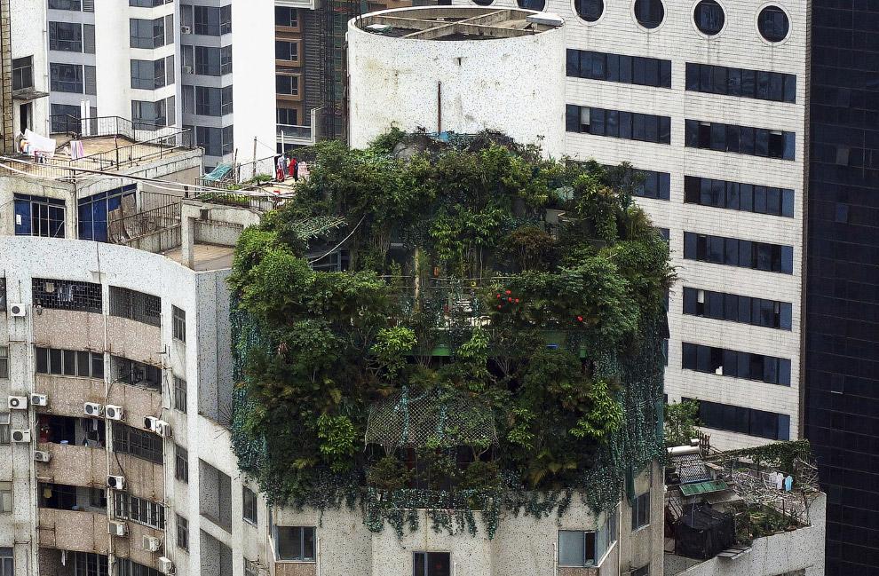 Незаконная стройка наверху 19-этажного жилого здания в Гуанчжоу