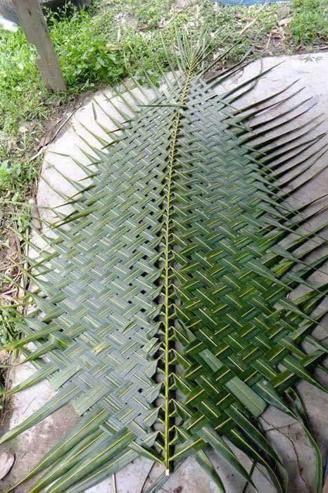 Завораживающие работы из листьев