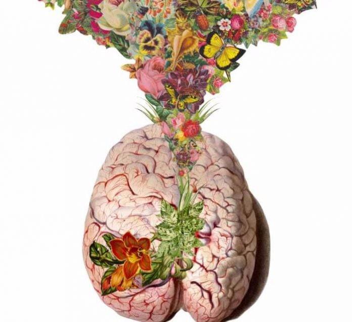 Узнайте не грозит ли Вам болезнь Альцгеймера