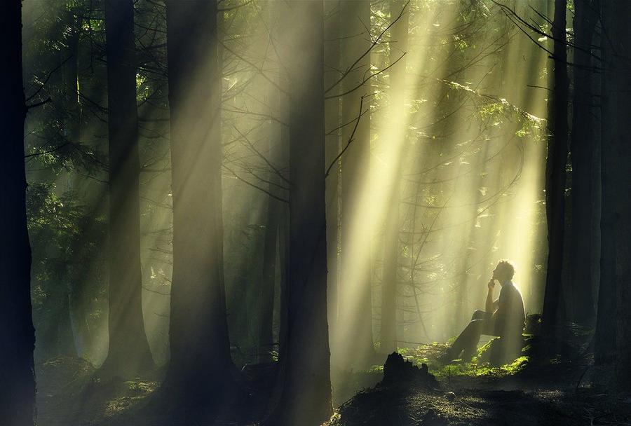 Photography by Robin Halioua Robin Halioua, природа, профессиональные фотографии, профессиональный фотограф