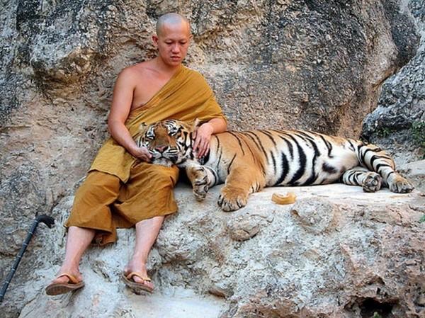 Как учил Будда