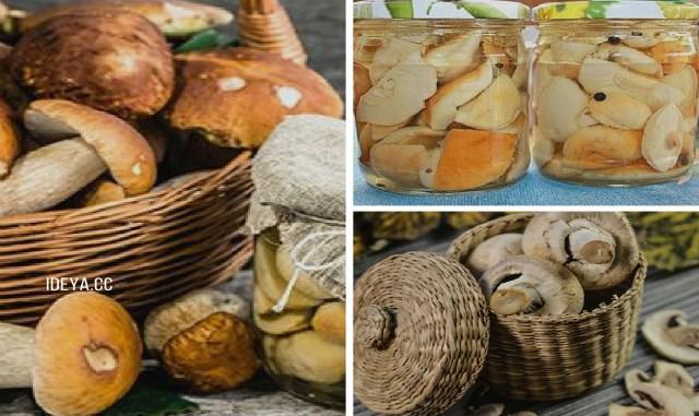 Как мариновать белые грибы: …