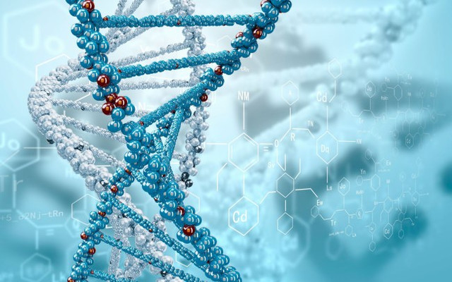 Человек может самостоятельно менять свое ДНК
