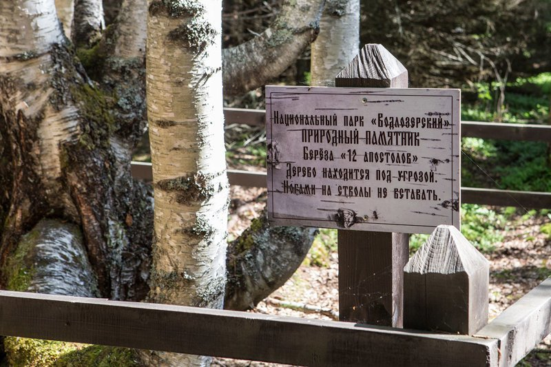 Свято-Ильинская Водлозерская пустынь Монастырь, Свято-Ильинская Водлозерская пустынь, фоторепортаж