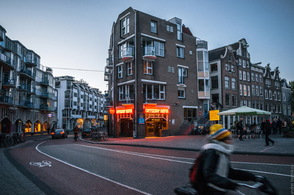 Adult rides a bicycle in historical part of Amsterdam against the coffeeshop with legal drugs in evening.