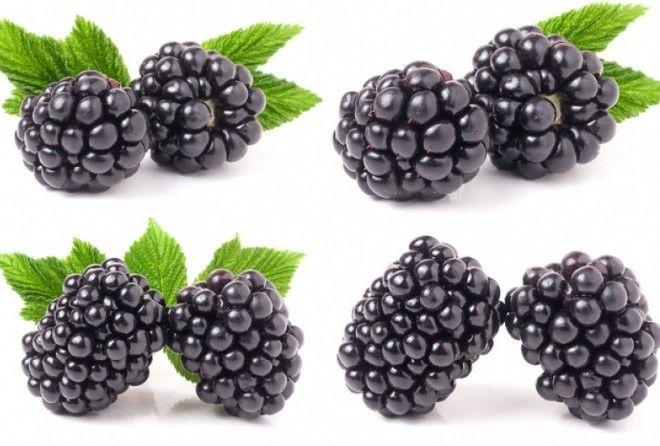 Самая полезная летняя ягода