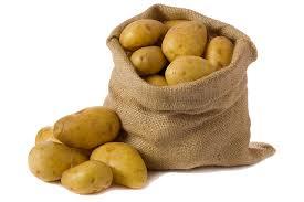 Картинки по запросу картофель