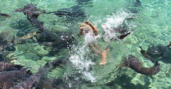 Няшное селфи модели: Акулы н…