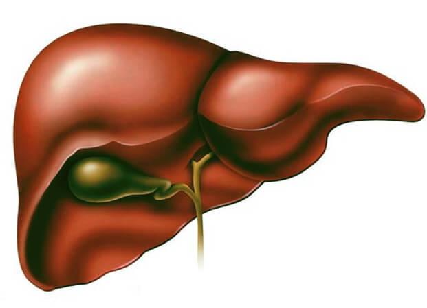 Причины и лечение стеатоза печени