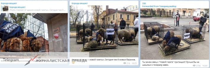 У здания редакции «Новой газеты» в Москве появились клетки с баранами