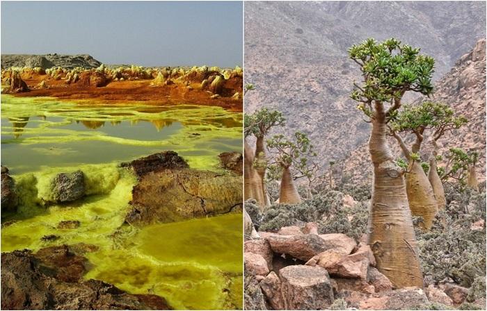 Удивительная планета Земля: 20 невероятной красоты фотографий из разных уголков земного шара