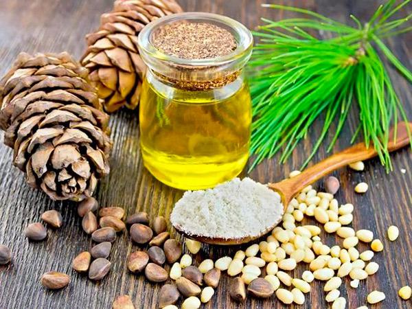 Лечебные растительные масла. Кедровое масло