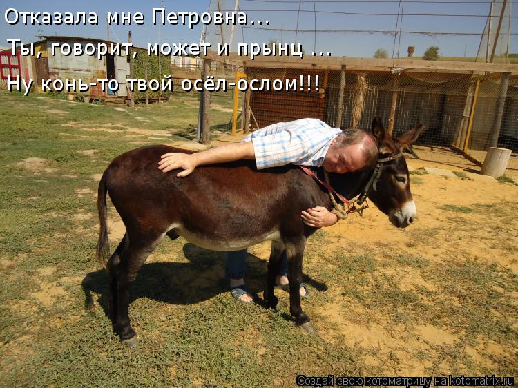 Котоматрица: Отказала мне Петровна... Ты, говорит, может и прынц ... Ну конь-то твой осёл-ослом!!!