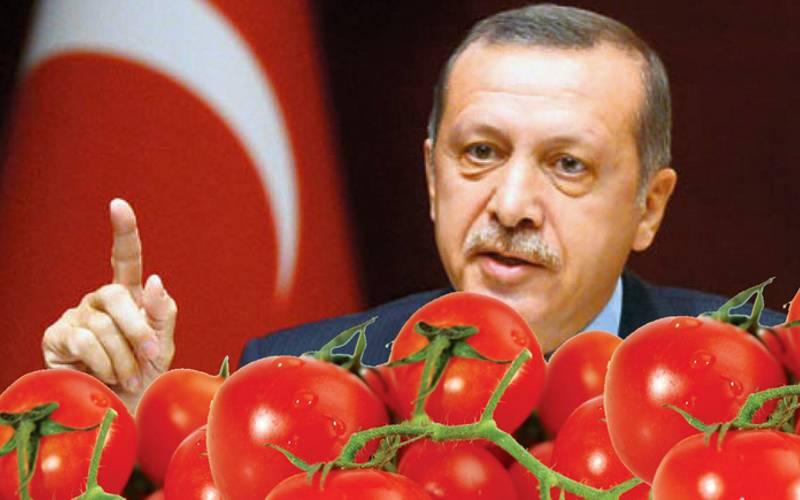 Война с Турцией: пшеницей и помидорами