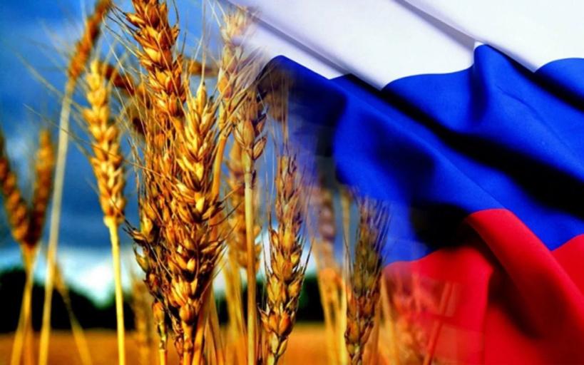Россия наращивает экспорт агропродукции