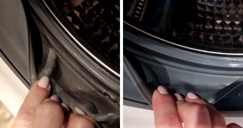 Бюджетный и действующий способ чистки стиральной машинки от плесени и налёта
