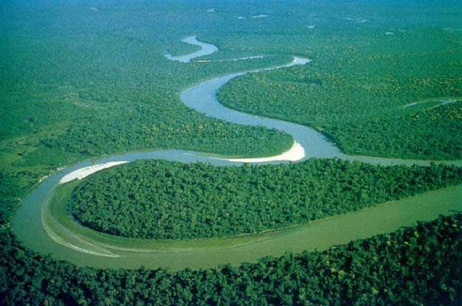 Интересное о джунглях Амазонки