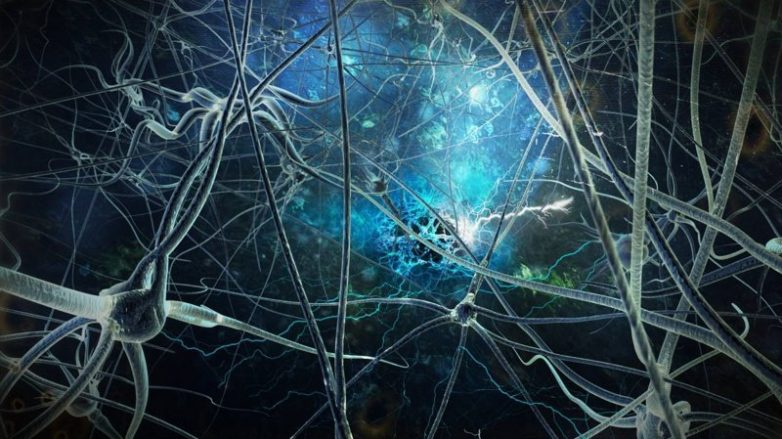Учёные считают, что мы можем менять реальность силой мысли