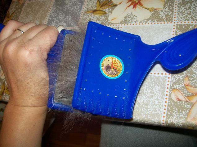 Подготовка собачьей шерсти к валянию.