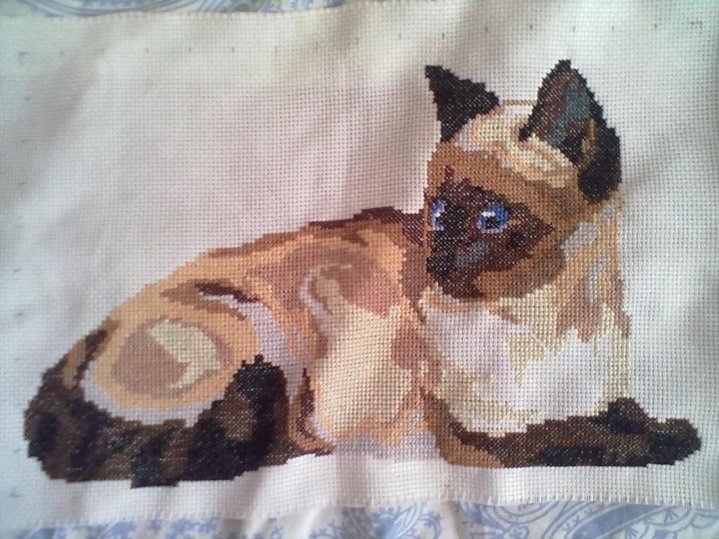 схему вышивки сиамская кошка
