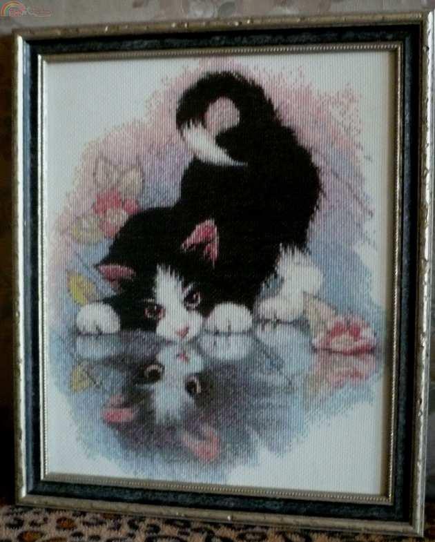Вышивка котенок и отражение