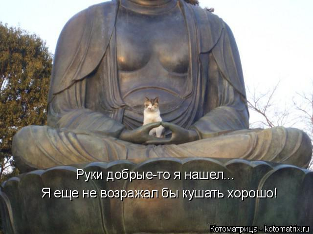 Муркоташки)