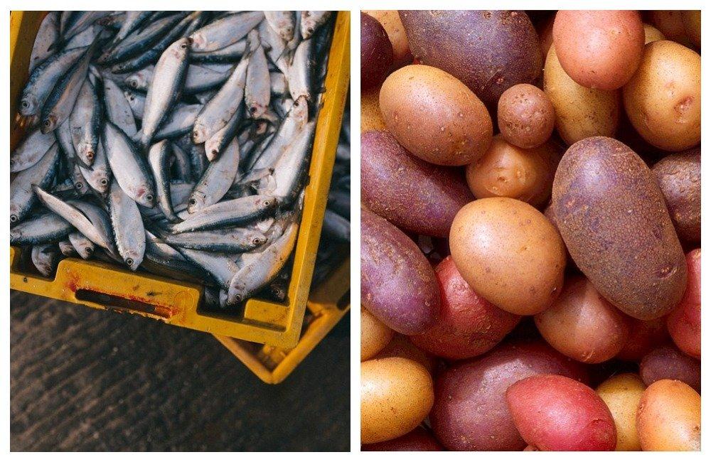 В Приморье упали цены на рыбу и овощи