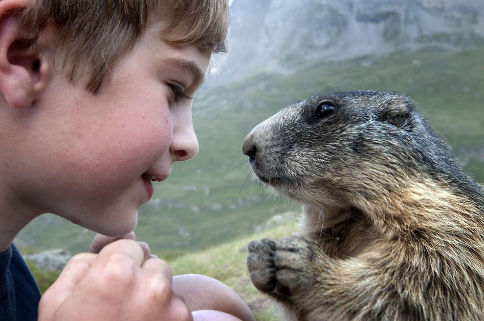 kidsanimals09 10 самых трогательных историй общения детей и животных