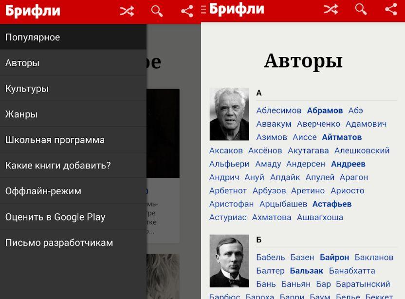 брифли приложение