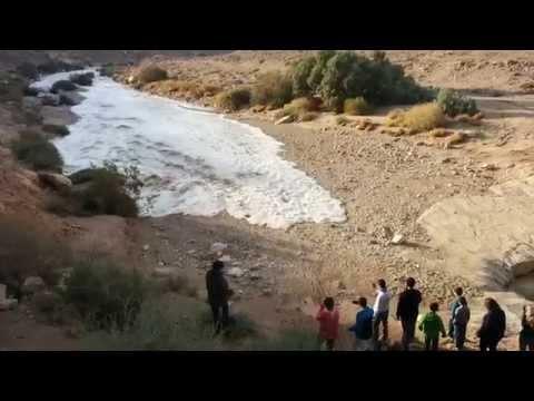 Чудо природы — за пару минут в пустыне появилась река!
