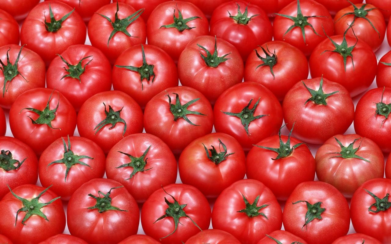 """Биологи назвали помидоры """"убийцами"""" рака"""